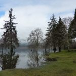 Lake Quinault Resort