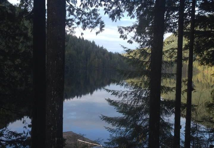 4th Annual Ghost Story (or whatever you are working on) Writing Retreat, Loon Lake, November 2018